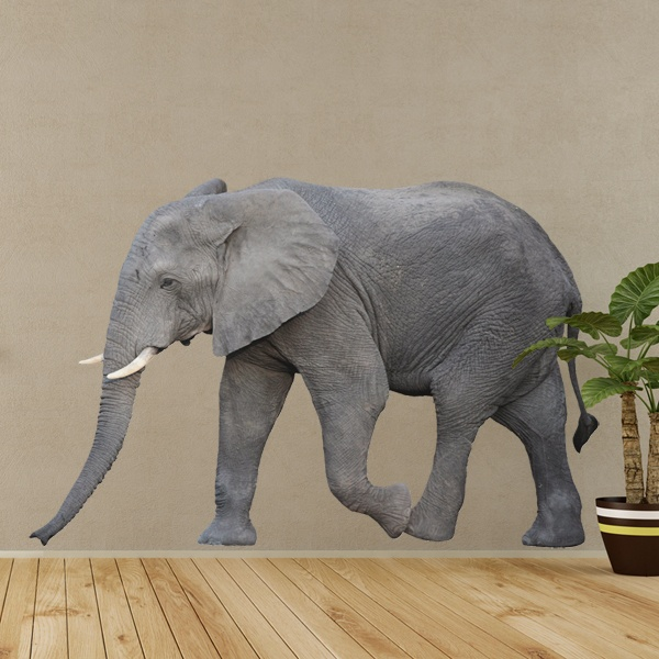 Wall Stickers: Elephant 2