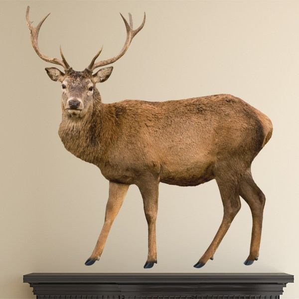 Wall Stickers: Deer
