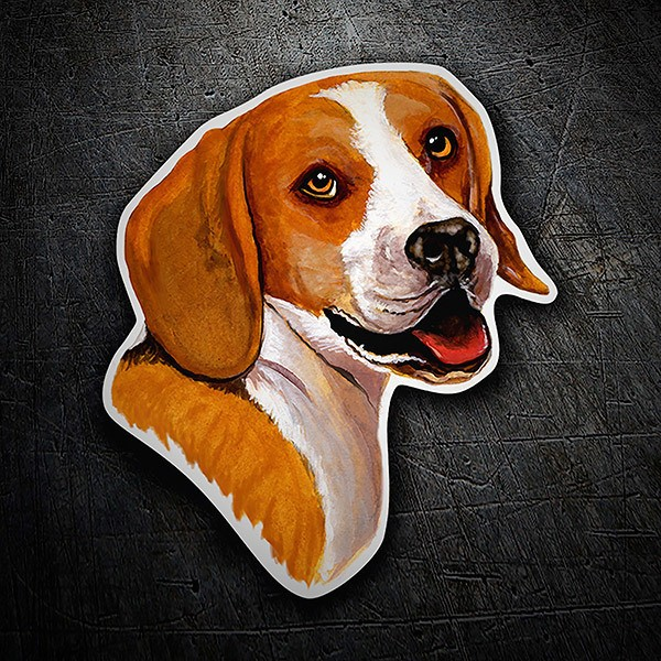 Car and Motorbike Stickers: Beagle
