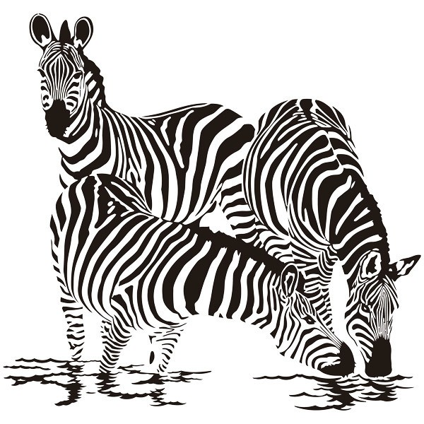 Wall Stickers: Zebras in the river