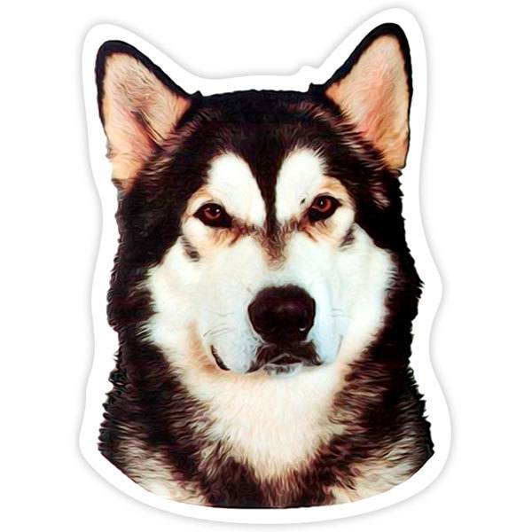 Car and Motorbike Stickers: Alaskan Malamute