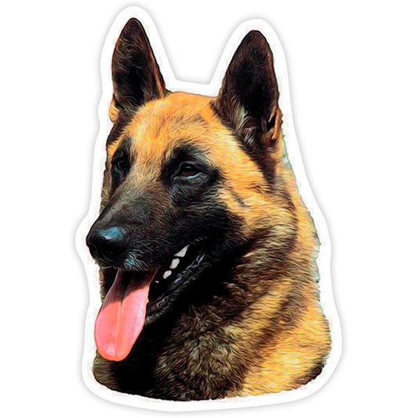 Car and Motorbike Stickers: Belgian Malinois