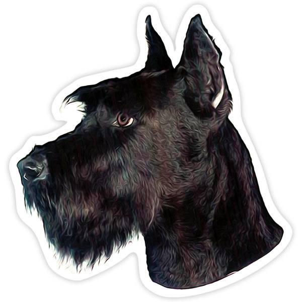 Car and Motorbike Stickers: Giant Schnauzer