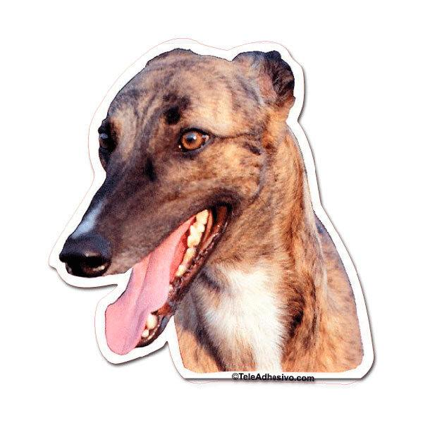 Car and Motorbike Stickers: Greyhound