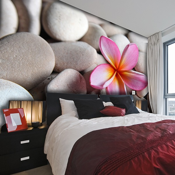 Wall Murals: Stones and flowers
