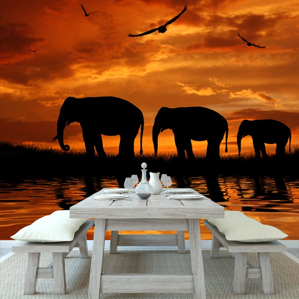 Wall Murals: Elefantes
