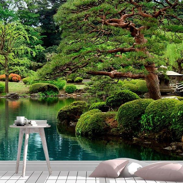 Wall Murals: Jardin japonés
