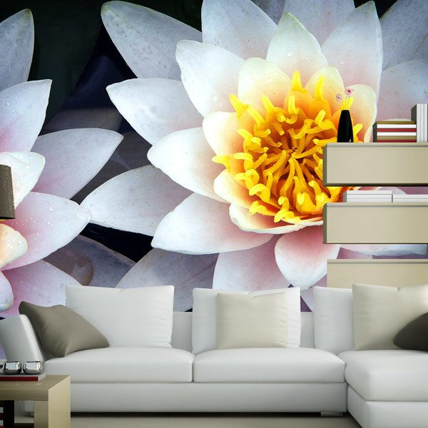 Wall Murals: Lotus Flowers