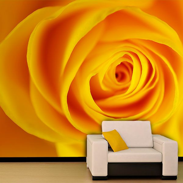 Wall Murals: Yellow Rose