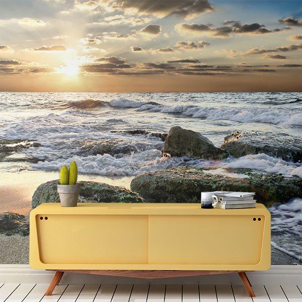 Wall Murals: Waves