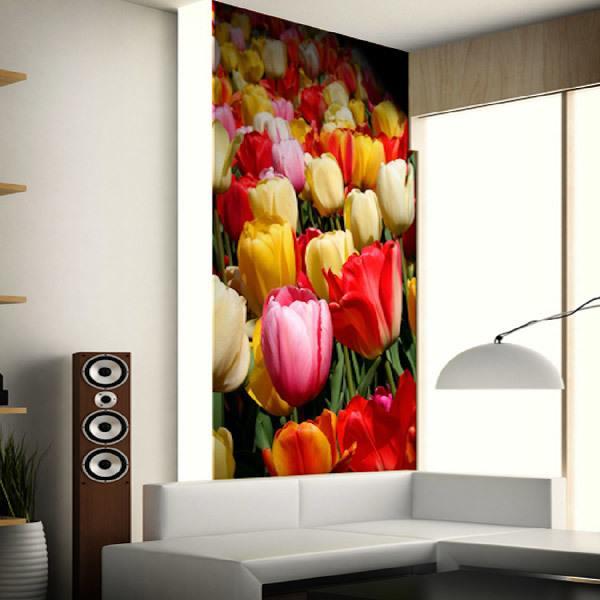 Wall Murals: Tulip