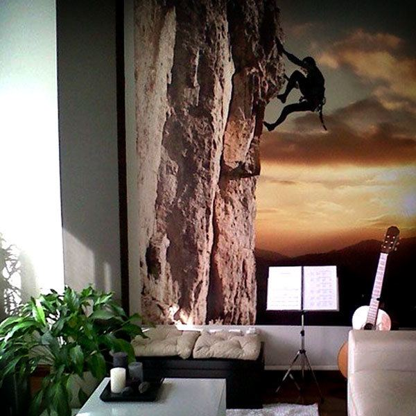 Wall Murals: Extreme