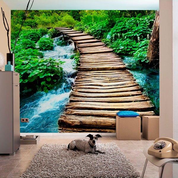 Wall Murals: Puente de madera