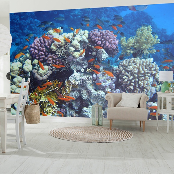 Wall Murals: Swimming in the coral