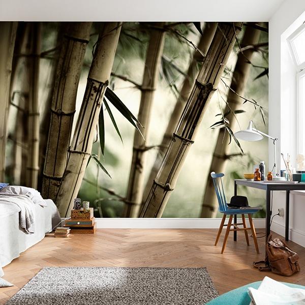 Wall Murals: bamboo White