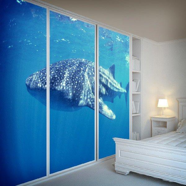 Wall Murals: whale Shark