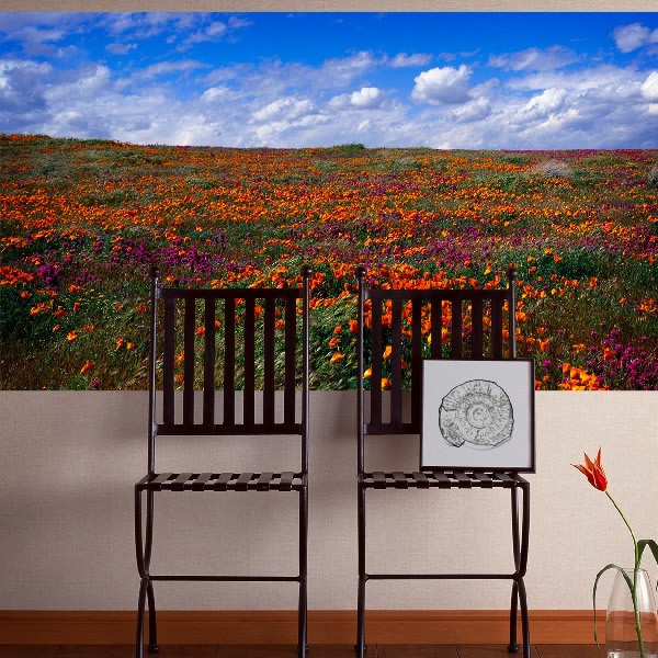 Wall Murals: Tulip fields