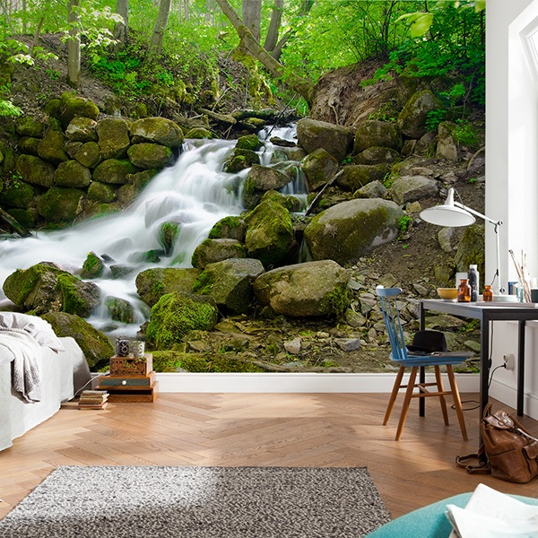 Wall Murals: Forest waterfall