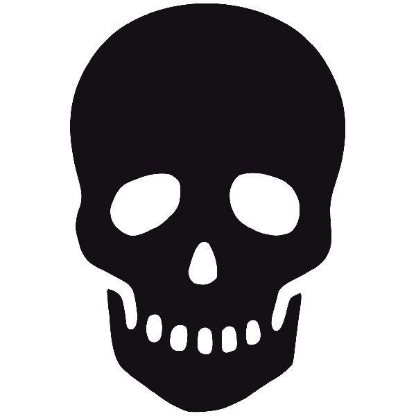 Car and Motorbike Stickers: skull47