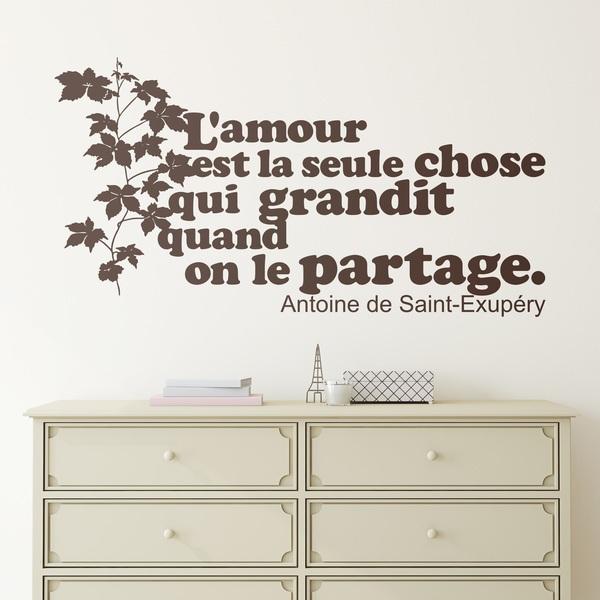 Wall Stickers: L amour est la seule chose qui grandit...