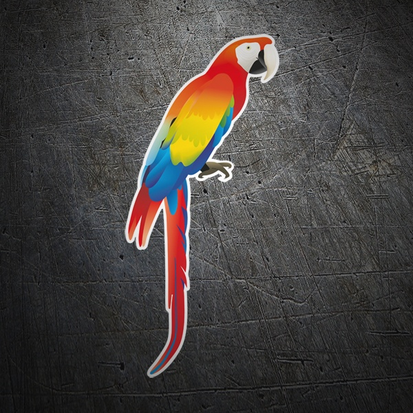 Car & Motorbike Stickers: Red macaw