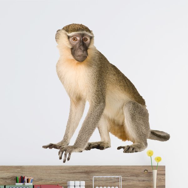 Wall Stickers: Macaque