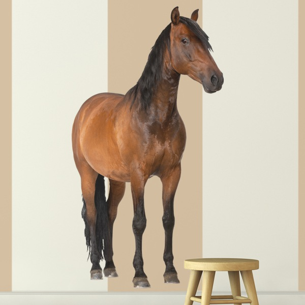 Wall Stickers: Brown horse 1