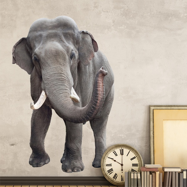 Wall Stickers: Elephant in front