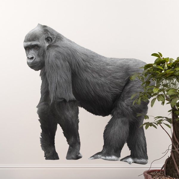 Wall Stickers: Gorilla walking