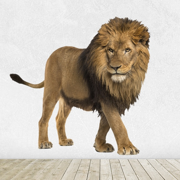 Wall Stickers: Watchful Lion 1