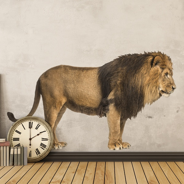 Wall Stickers: Lion on the prowl