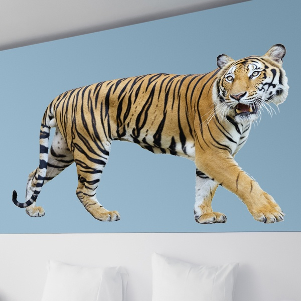 Wall Stickers: Tiger stalking