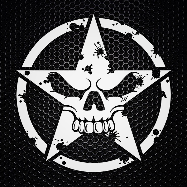 Car & Motorbike Stickers: Worn skull star