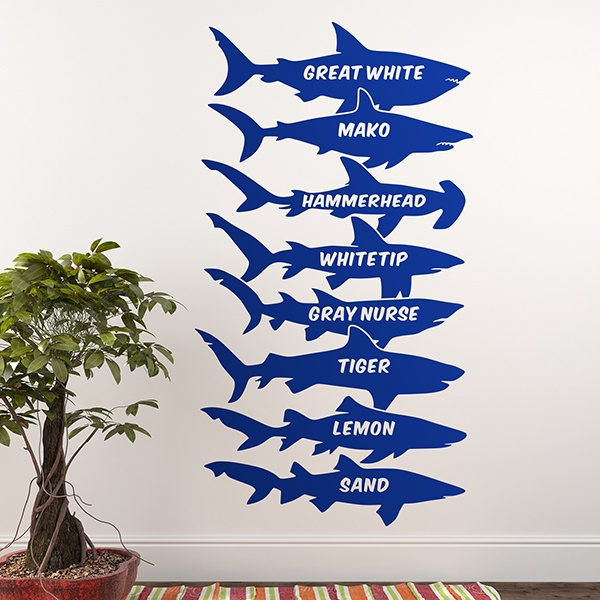 Wall Stickers: Sharks names English