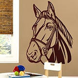 Wall Stickers: Horse 2