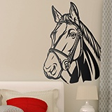 Wall Stickers: Horse 3