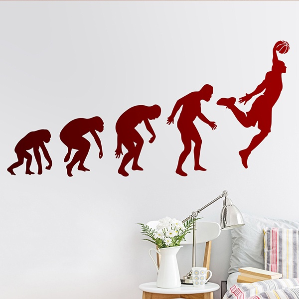 Wall Stickers: Evolution basketball