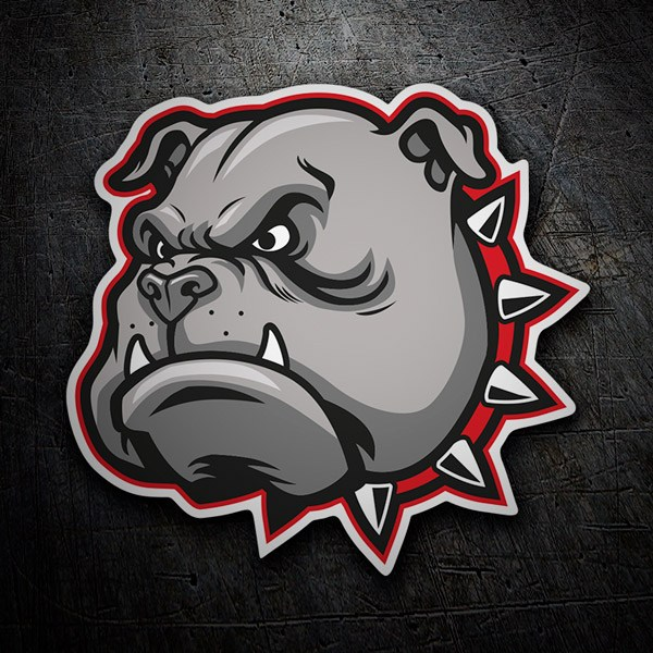 Car & Motorbike Stickers: Bull dog