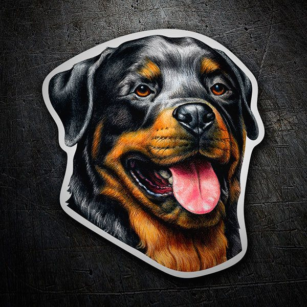 Car and Motorbike Stickers: Rottweiler