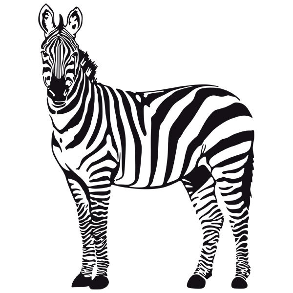 Wall Stickers: Zebra