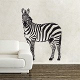 Wall Stickers: Zebra 3