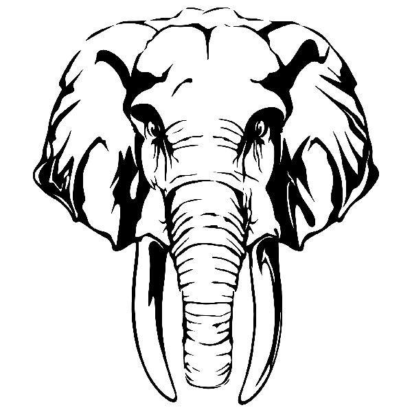 Wall Stickers: Head of African Elephant