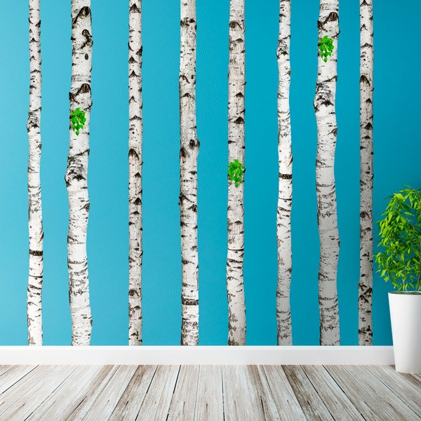 Wall Stickers:  Set 5 Birch trunk