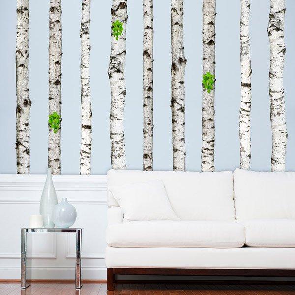 Wall Stickers:  Set 5 Birch trunk