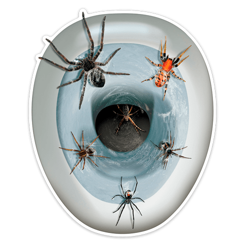 Sticker For Bathroom Of Spiders Muraldecal Com