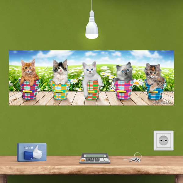 Wall Stickers: Adhesive poster of 5 kittens