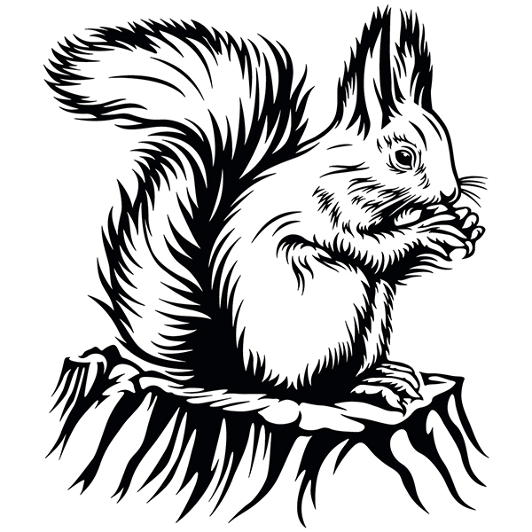 Wall Stickers: Squirrel eating
