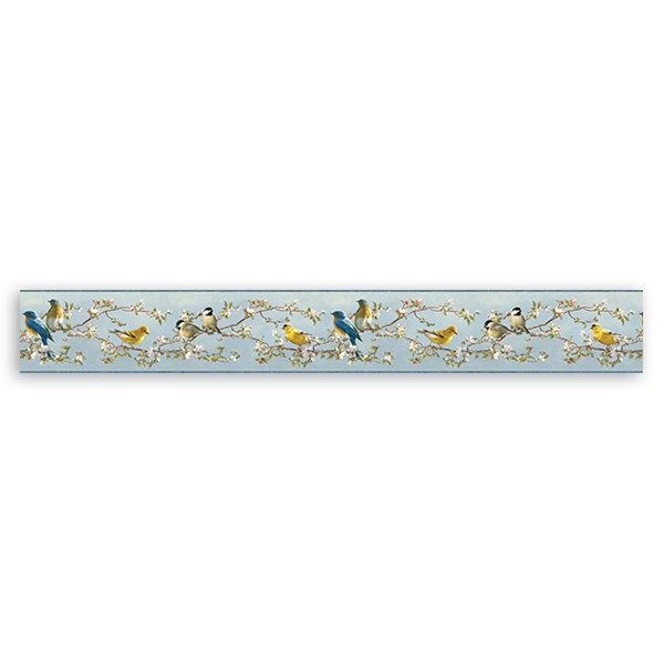 Wall Stickers: Wall Border Colorful birds