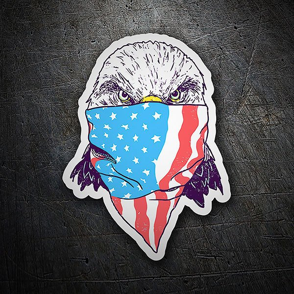 Car & Motorbike Stickers: American eagle
