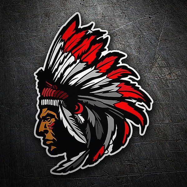 Car & Motorbike Stickers: Indian Chief